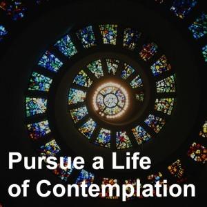 23 Contemplation